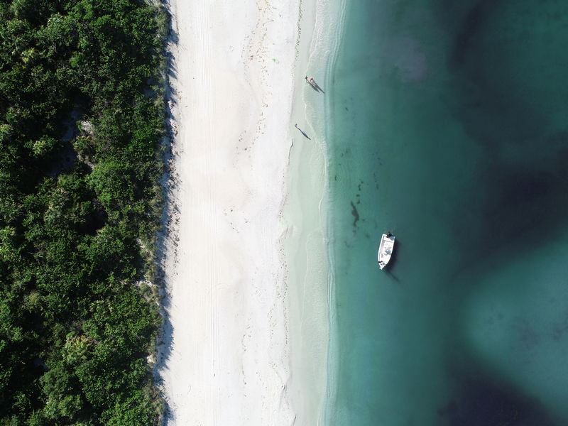 A photo from the survey of Barefoot Beach in Naples, Florida